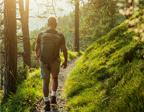 image of man walking in forest